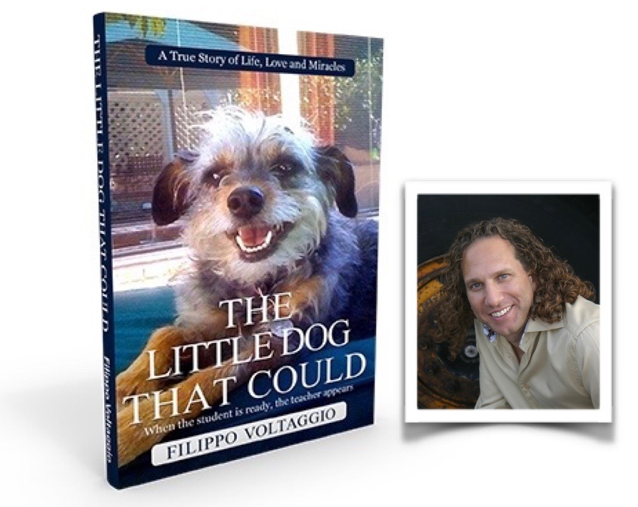 The Little Dog That Could by Filippo Voltaggio - Now Available at Barnes and Noble