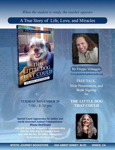 Mystic Journey Bookstore Event,